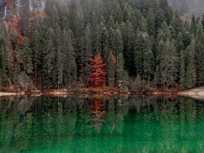 Lago di Towel